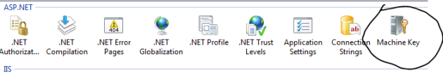 Machine key icon in IIS