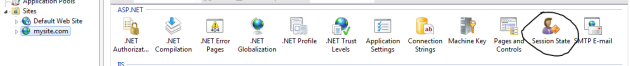 Session state icon in IIS