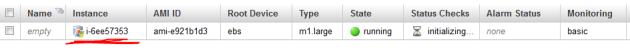 Instance running in AWS manager