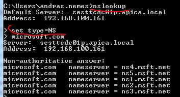 NsLookup name server record