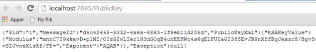 RSA key printed in web browser