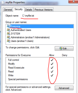 File access control set to Everyone full control