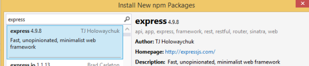 ExpressJs package in NPM