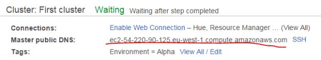 Master public DNS of Amazon EMR cluster