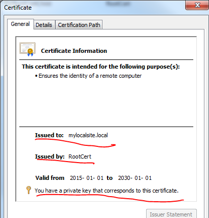 General properties of self-signed SSL certificate