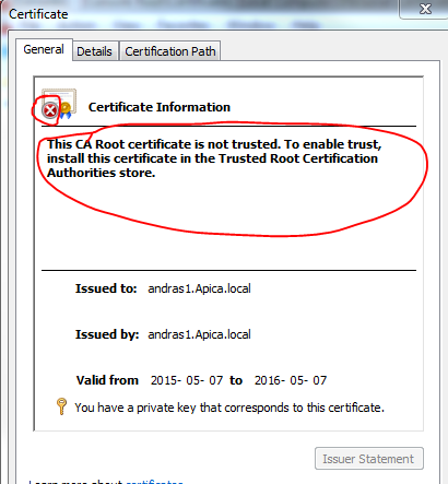 IIS certificate not trusted after removing from global CA store