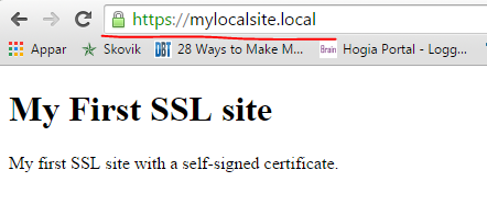 Local SSL site as viewed in Chrome