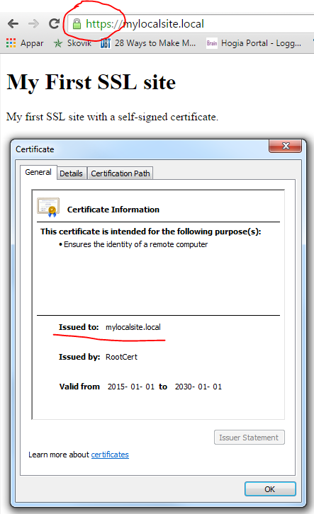 SSL certificate verified by web browser