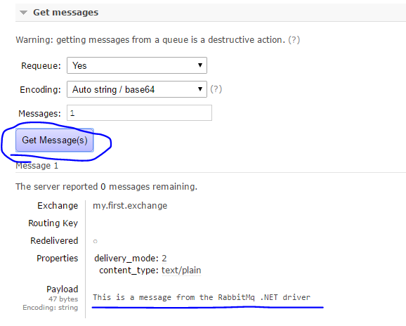 Message retrieved from the RabbitMq queue