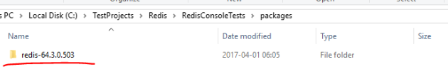Redis subfolder in .NET console application