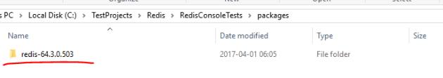 Redis subfolder in .NET console application