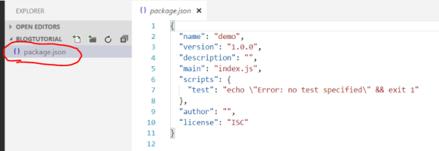 Package JSON file open in Visual Studio code for NPM webpack project